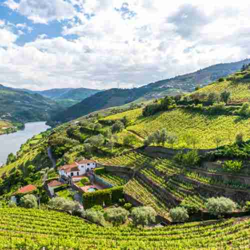 Discover It Tour to the Douro Valley